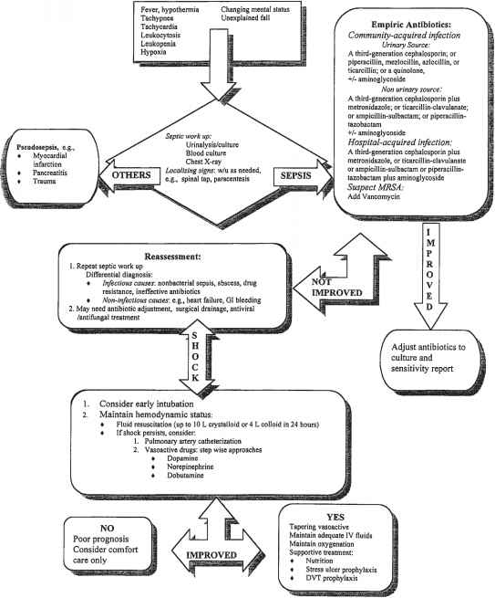 Bacterial Uti Pathophysiology