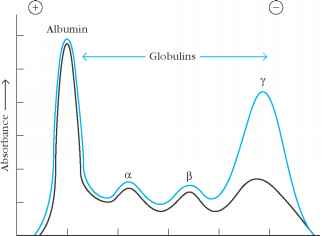 Migration Distance Globulins