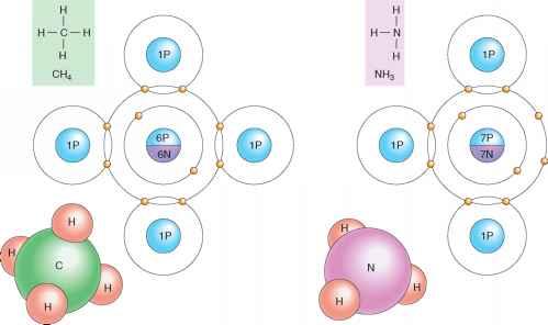 Ionic Bonds - Human Physiology - 78 Steps Health Journal