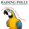 Raising Polly: How-to Raise A Healthy, Happy Well Adjusted Bird!
