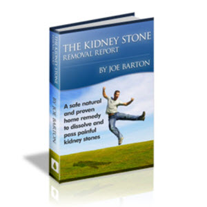 Kidney Stone Removal System