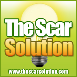 The Scar Solution Ebook By Sean Lowry