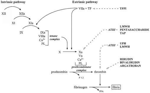 Antithrombin Site Action