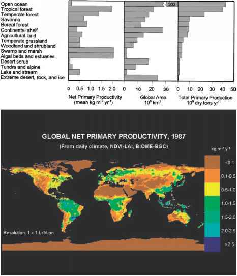 Net Primary Productivity Biomes