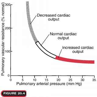 How Measure Pulmonary Blood Pressure